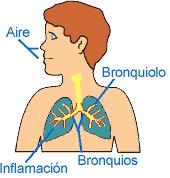 Funcionamiento con Inflamacion crónica