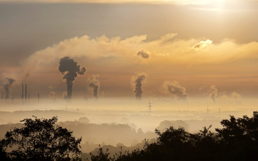 """La contaminación, """"principal factor de riesgo ambiental para la salud"""", en el podcast Date un respiro"""